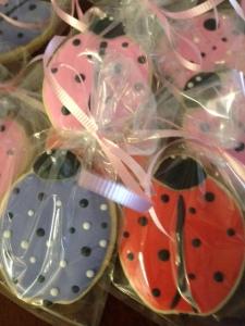 ladybugs 1 (4)
