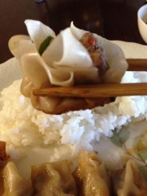 dumpling11